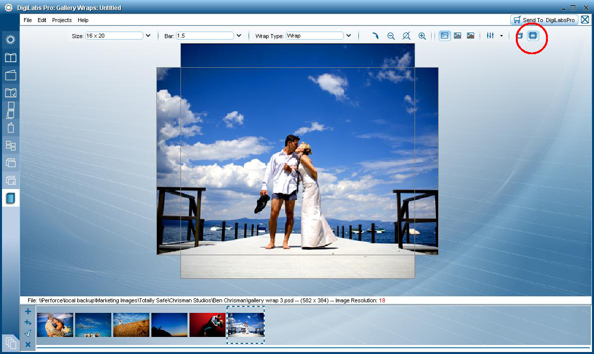Gallery Wrap Software